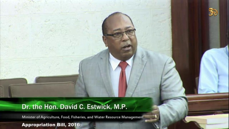 Dr. the Hon. David C. Estwick